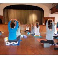 Festival Yoga with Kris Onuf
