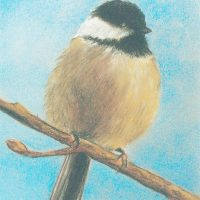 Pastel Bird Painting with Bob Bryson