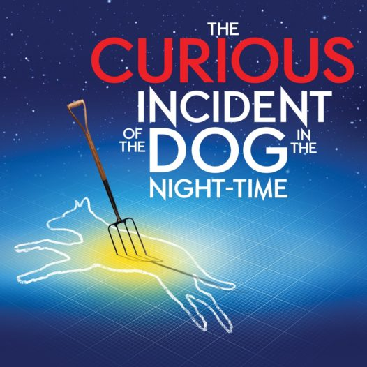 The Curious Incident of the Dog in the Night-Time Meetinghouse Theater Lab Spring Show May 18, 19 and 20