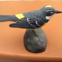 Bird Carving: Whittle a Warbler with Steve Valleau