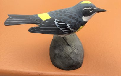 Bird Carving: Whittle a Warbler