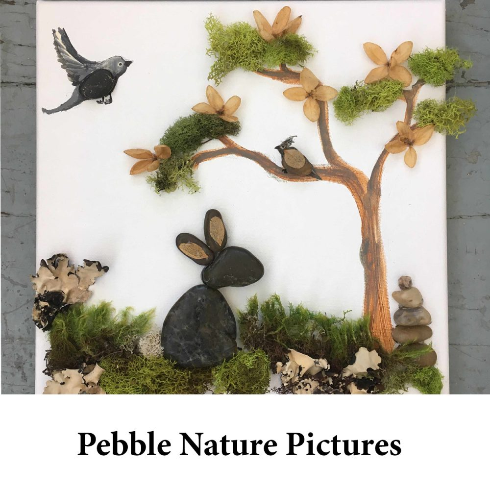 Pebble Nature Pictures for page