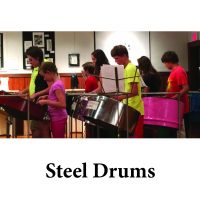 Steel Pan for page