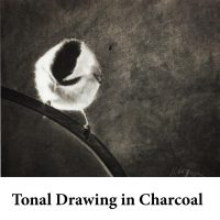 Tonal Drawing in Charcoal for page
