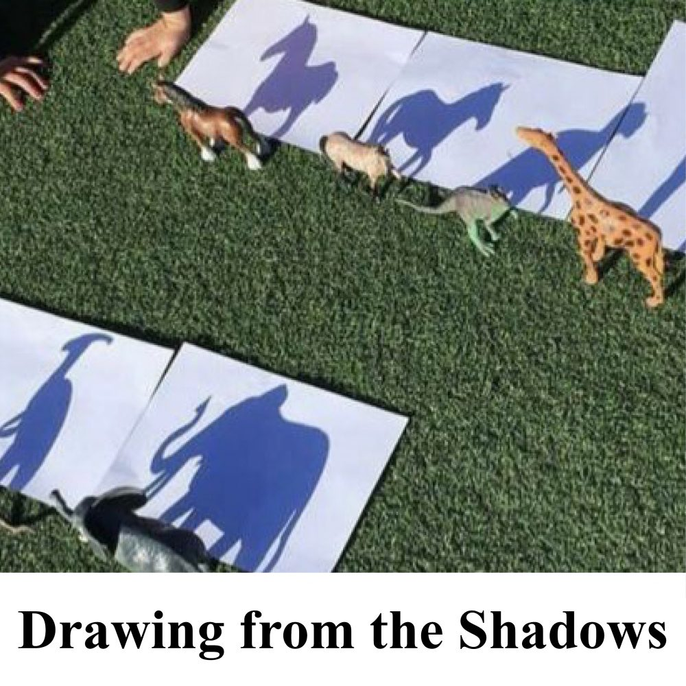 Drawing from the Shadows