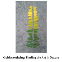 Goldsworthying- Finding Art in Nature for page